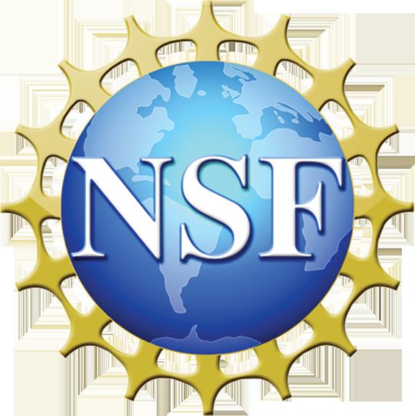 NSFlogoTrans.png